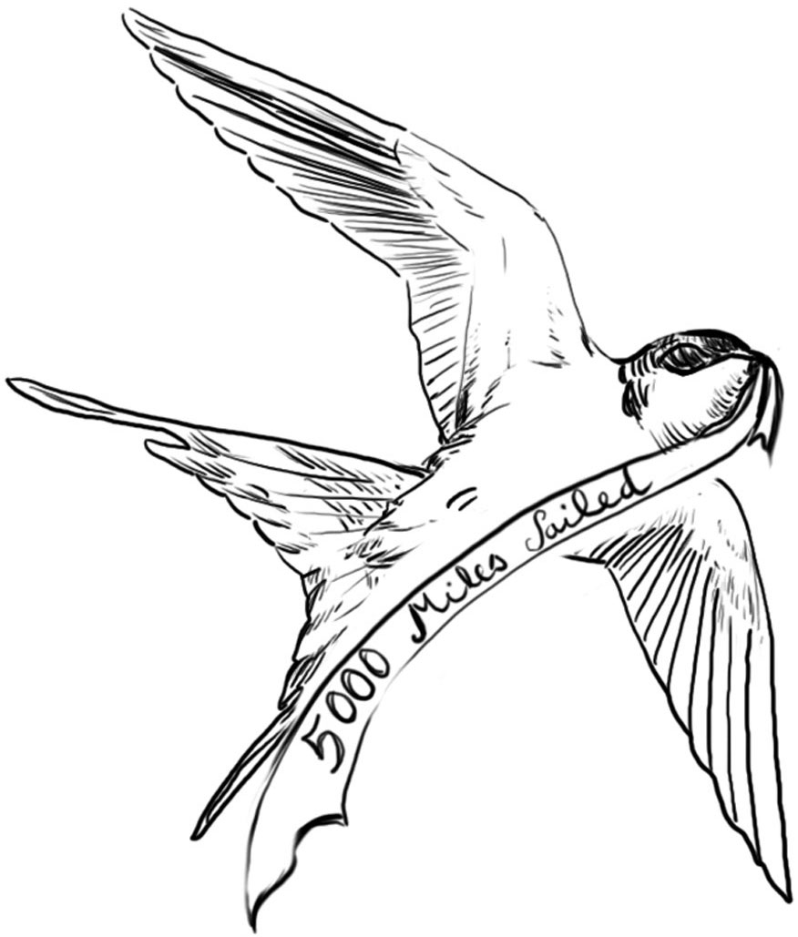 Swallows represented that a sailor had sailed more than 5,000 miles