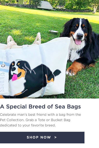 The Pet Collection - find your favorite breed