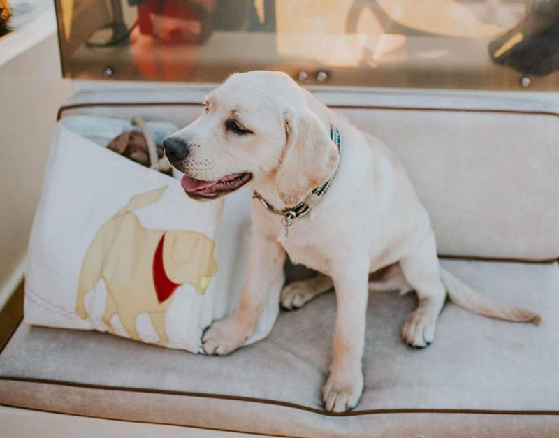 Yellow Lab Tote Made From Recycled Sails